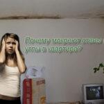 Почему мокреют стены и углы в квартире?