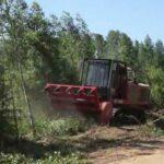 Расчистка леса дело важное и сложное