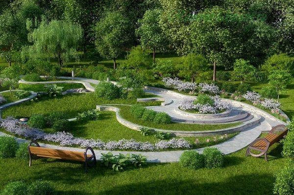 растения для городского озеленения
