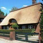 Современная крыша из камыша – технология, проверенная веками
