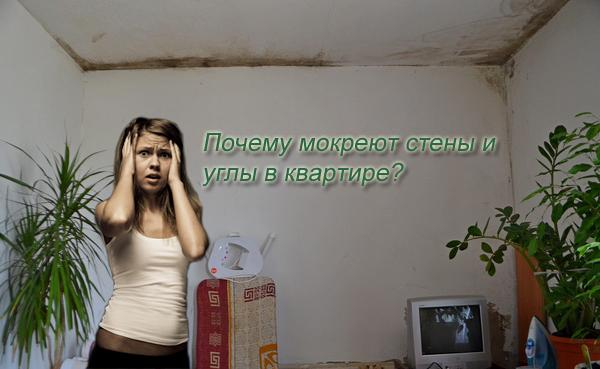 Почему мокреют стены и углы в квартире