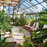 Полезные советы начинающим огородникам и садоводам