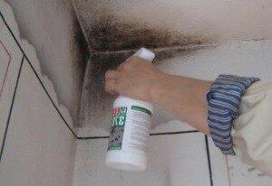 плесень на кухонной стене