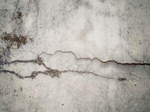 Живой бетон