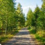 Строительство коттеджей на земельных участках Подмосковья