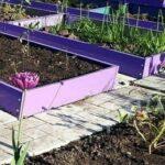 Заботы огородника — необходимые работы для получения урожая