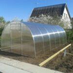 Теплицы из поликарбоната – правильный выбор при занятиях огородничеством и цветоводством!